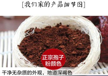 泰山灵芝孢子粉,原木仿野生种植,灵芝三萜含量高
